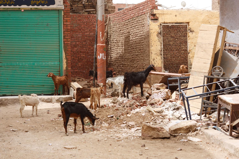 Ägypten 18