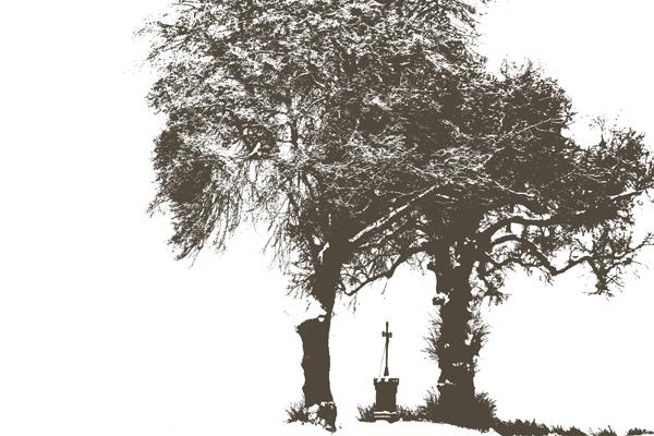 Baum Schwellenwert Vorschau 02