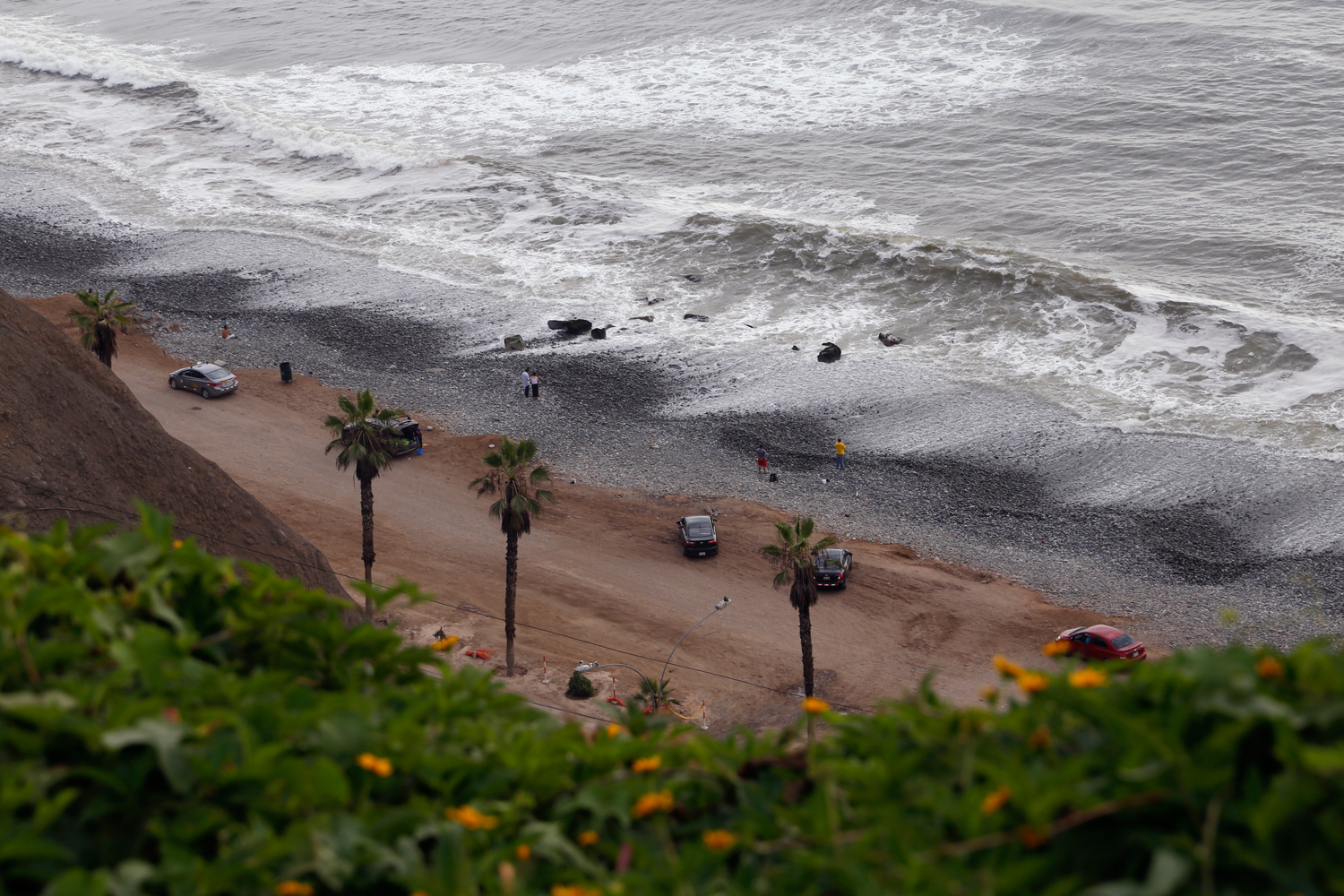 As seen from above, a number of limousines are parked along a dirt road leading to a gravel beach. Framed by the yellow blossoms of a cliff side bush and a row of palm trees, a handful of people are staring into the distance as grey, foamy waves crash onto the grey beach.