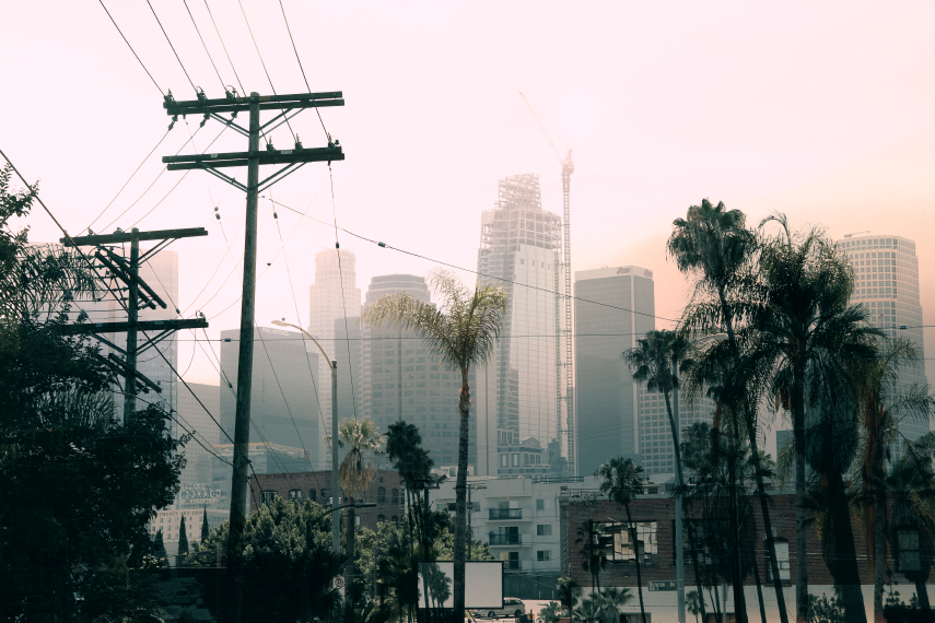 Los Angeles Double Exposure